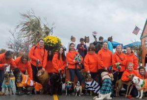 benefits of dog walking company