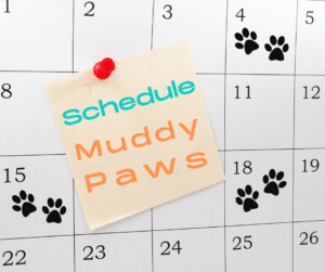 no minimum walks required at muddy paws, schedule what you need which can include a regular schedule or an as needed schedule just like the on demand dog walking companies